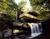 Martin House Trip to Fallingwater - SOLD OUT
